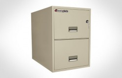 """2G3131 SentrySafe Two Drawer Legal, 31"""" Deep **Discontinued**"""
